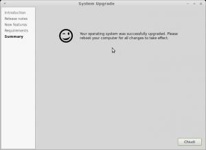 Schermata-System Upgrade-5
